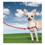 25814-easy-walk-dog-harness-x-small-red.jpg