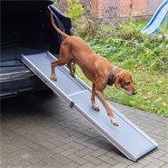 26918-1-telescopic-car-ramp-for-dogs-aluminium.jpg