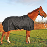 500505-turnout-horse-rug-rain-rug-outdoor-winter-rug-for-horses-300g-size-145.jpg
