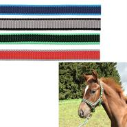 501027-1-kerbl-foal-horse-headcollar-halter-exclusive-overview.jpg