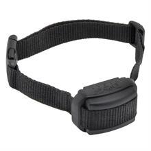 24010-dogtrace-d-mute-s-antibark-collar-for-medium-sized-dogs.jpg