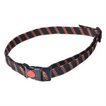 24493-elastic-collar-25-mm-wide-orange.jpg