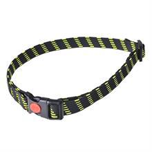 24495-elastic-collar-25-mm-wide-yellow.jpg