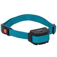 24558-1-dogtrace-aqua-spray-replacement-extra-receiver-for-dog-spray-collar.jpg