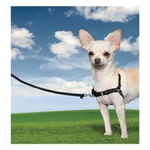 25812-easy-walk-dog-harness-x-small-black.jpg