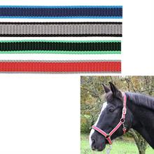 501028-1-kerbl-foal-horse-headcollar-halter-exclusive-overview.jpg