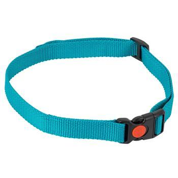 24491-1-dog-trace-replacement-collar-mini-green.jpg
