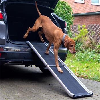 26916-1-foldable-car-ramp-for-dogs-aluminium.jpg