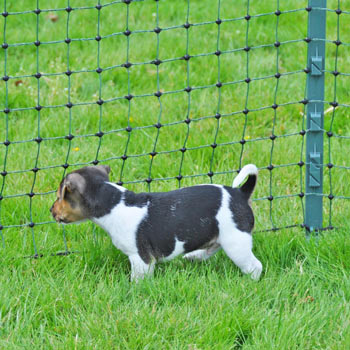 27701-Netz-Zaun-fuer-Hunde-Kaninchen.jpg