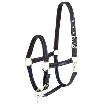 501320-1-goleygo-v2-halter-for-horses-and-ponies-brown-light-blue.jpg