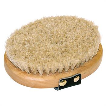 502030-1-kerbl-horse-brush-co.jpg