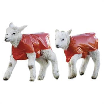 520200-1-kerbl-25-lamb-blanket-red.jpg