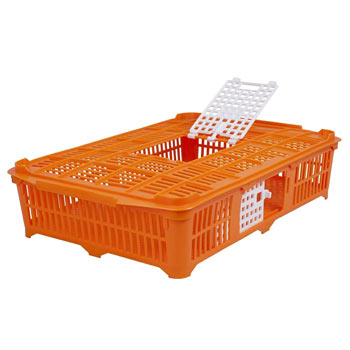 560700-poultry-transport-crate-for-pigeonsquail-67x40x13-cm.jpg