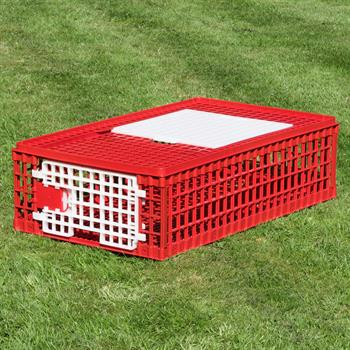 Poultry Transport Box, Break-Resistant Plastic, 2 Doors (95 x 57 x 24 cm)