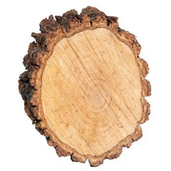 930772-1-voss.garden-birch-decorative-birch-disc-round.jpg