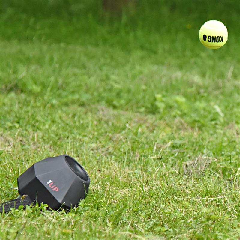 24412-11-dogtrace-d-ball-up-ball-shooting-machine-for-dog-training-and-education-incl-remote-control
