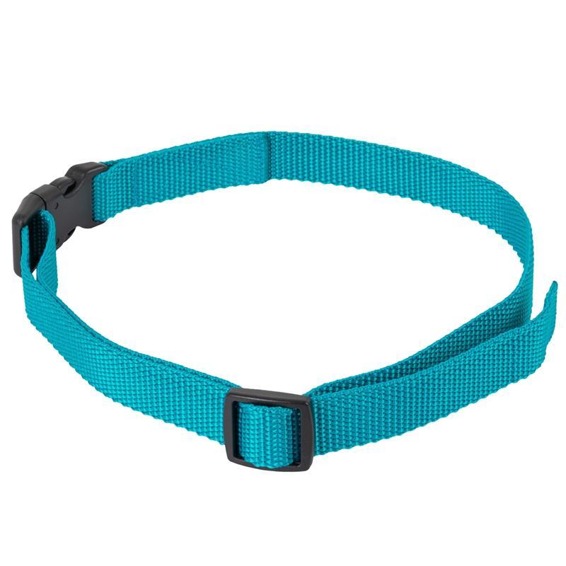 24491-2-dog-trace-replacement-collar-mini-green.jpg