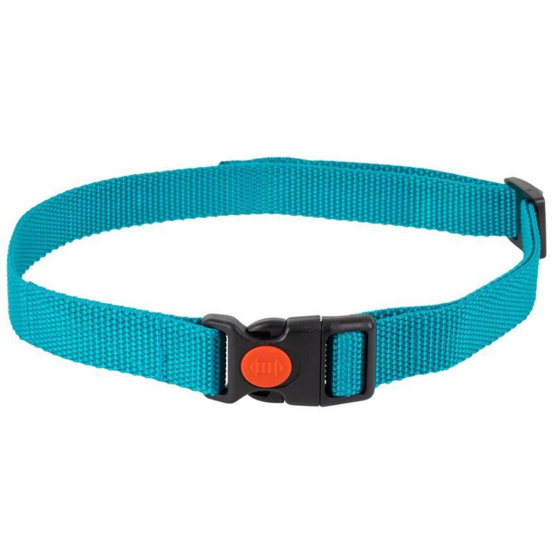 24491-3-dog-trace-replacement-collar-mini-green.jpg