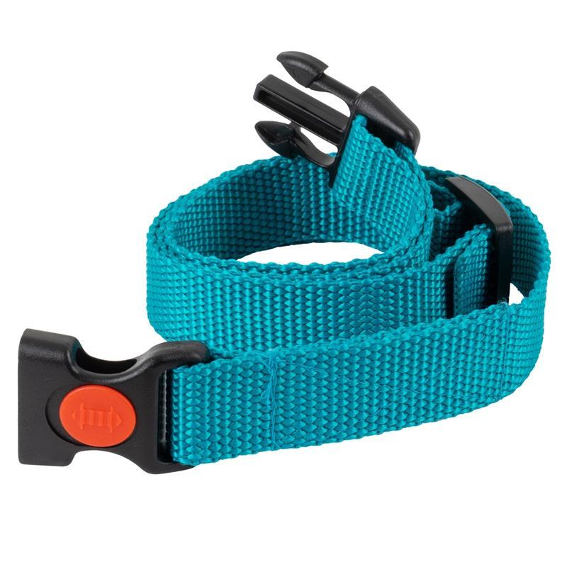 24491-4-dog-trace-replacement-collar-mini-green.jpg