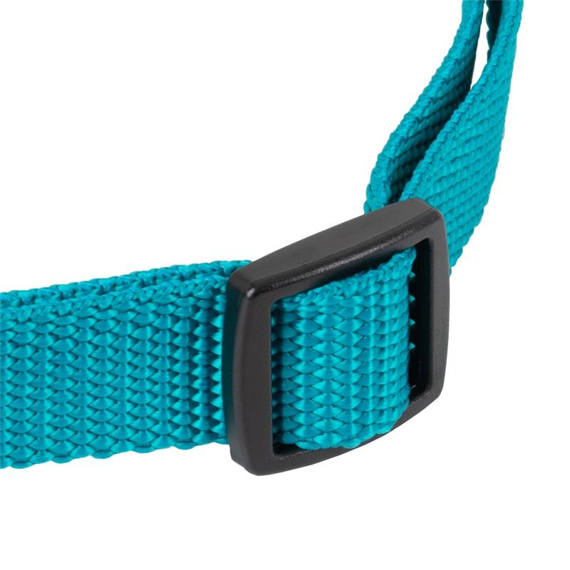 24491-5-dog-trace-replacement-collar-mini-green.jpg