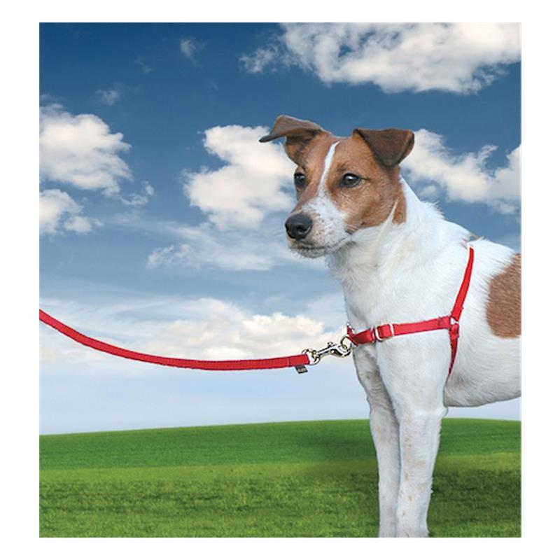 25818-easy-walk-dog-harness-small-red.jpg
