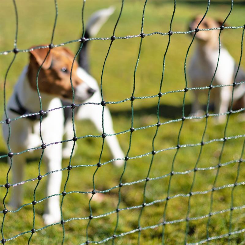 27702-7-voss.pet-petnet-10m-dog-fence-netting-puppy-rabbit-65cm-10-posts-1-spike-green.jpg