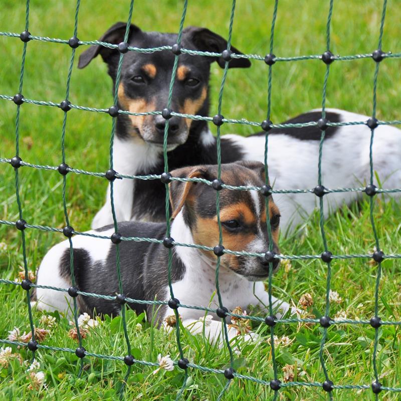 27702-8-voss.pet-petnet-10m-dog-fence-netting-puppy-rabbit-65cm-10-posts-1-spike-green.jpg