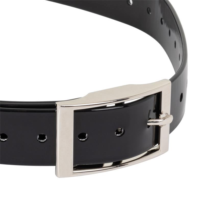 2952-4-voss.pet-remote-trainer-replacement-collar-dog-black.jpg