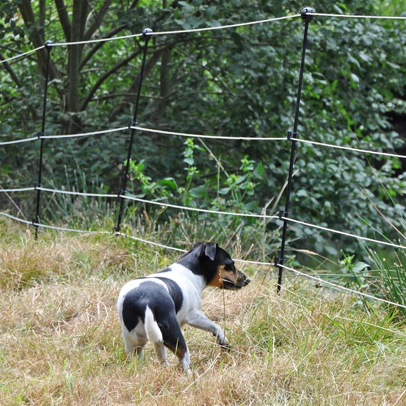 42556-Hundezaun-Zaun-fuer-Hunde-Stromzaun-Abschreckzaun.jpg