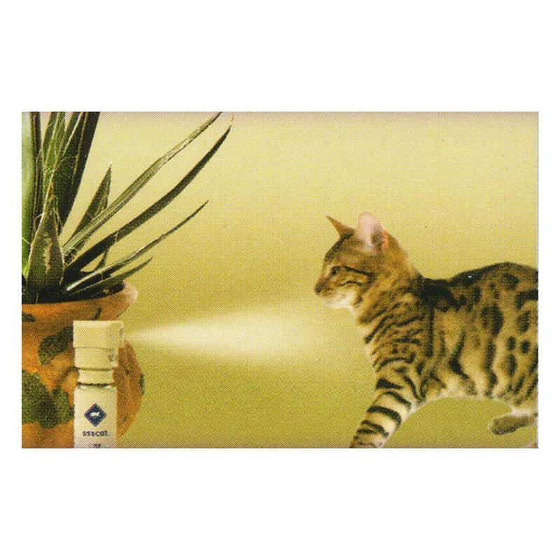 45325-14-innotek-ssscat-cat-repeller-small-animal-repellent-with-compressed-air.jpg