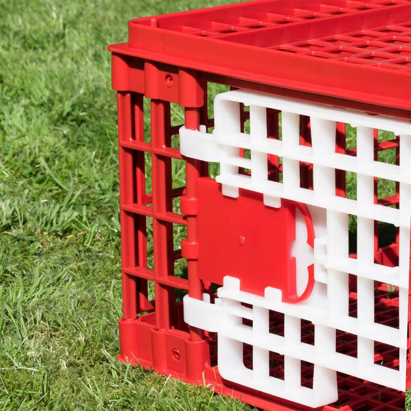 Poultry Transport Box, Break-Resistant Plastic, 2 Doors (95 x 57 x 24 cm)