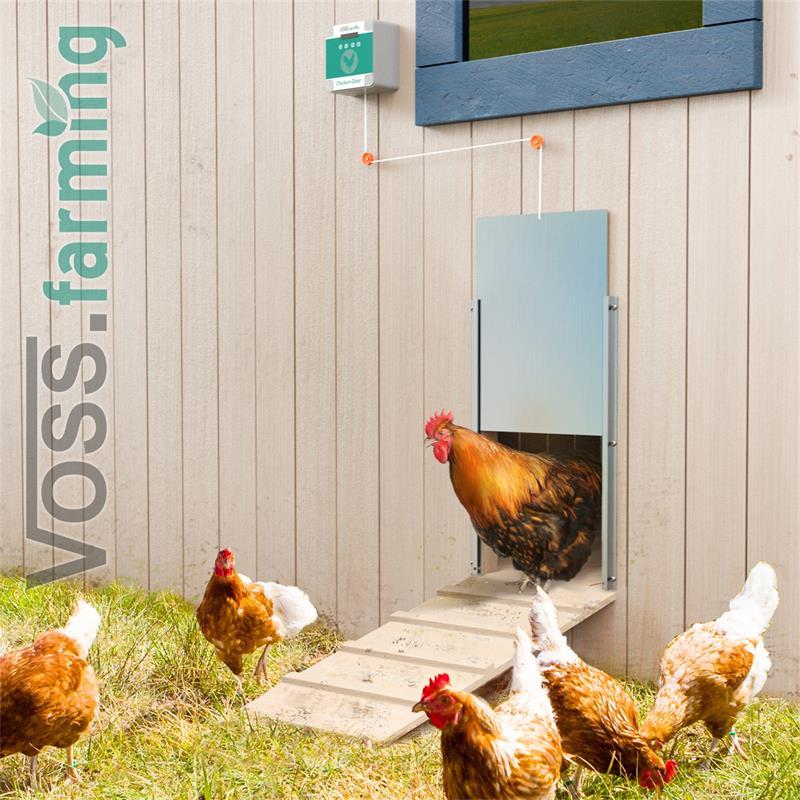 561855.uk-12-voss.farming-electronic-automatic-chicken-coop-door-opener-aluminium-220-330mm.jpg