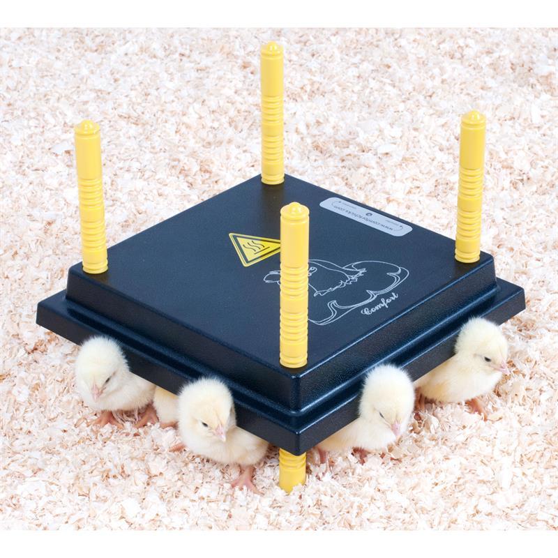 80370-2-UK-chick-brooder-comfort-25x25cm-15w.jpg