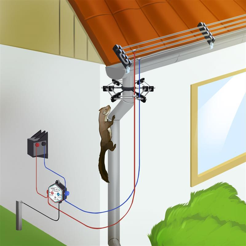 Marder-Abwehr-Hausabsicherung-Dachrinne-Fallrohr.jpg