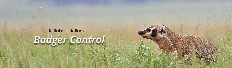 Badger Control