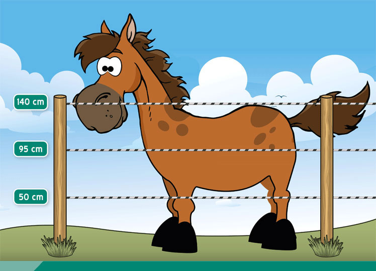 Electric fence, electric fence, horse fence