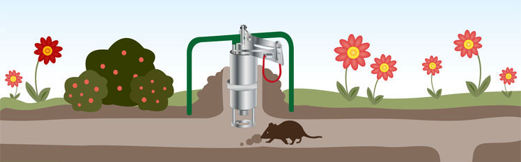 Purchase affordable vole shooting traps at Weidezaun.info!