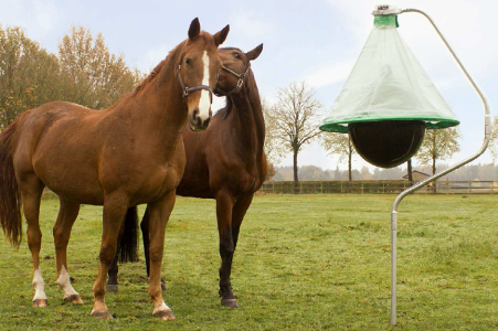 Horse fly trap Holland H trap protect horses horse fly bites
