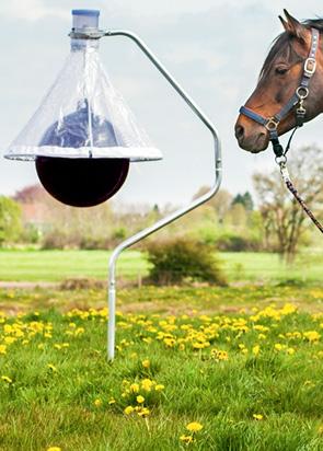 tabanus-horsefly-trap