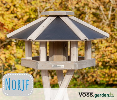 Bird table Norje